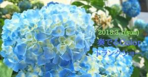 3月11日(日)【奏でるColor】トランクショー