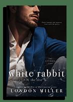 white rabbit the rise
