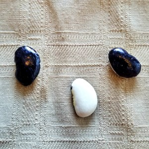 "Favomancy: Divining with Beans ""no"" answer - two black sides up"