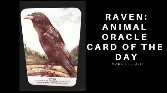 Raven Oracle Card