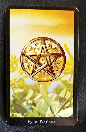 Ace of Pentacles - A golden pentacle floating above green leaves