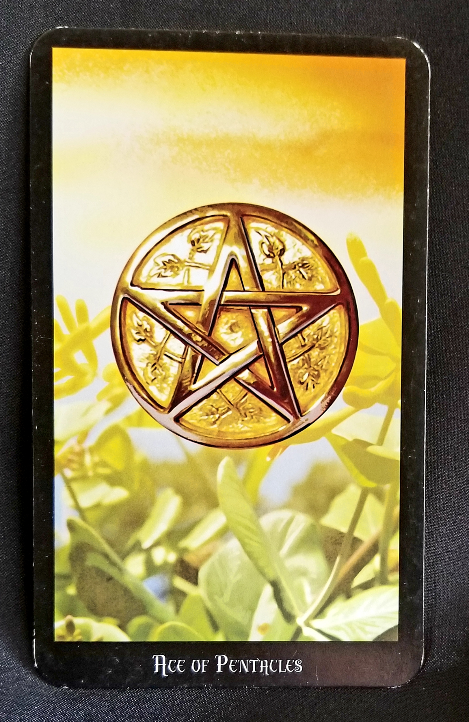 Ace of Pentacles - Tarot Card of the Day - Beneath the