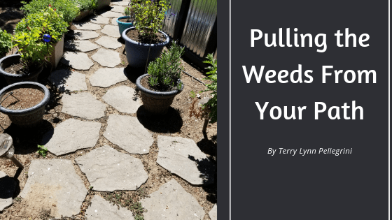 Pulling the Weeds From Your Path