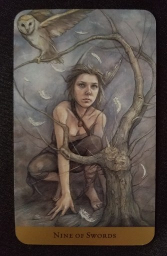 Nine of Swords - An elf-like woman crouching behind a gnarled, leafless tree, an owl perched on the upmost branch.