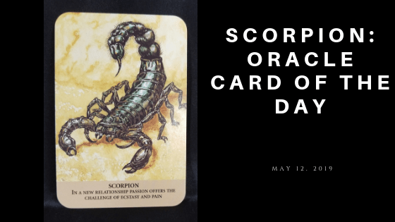 Scorpion Oracle Card