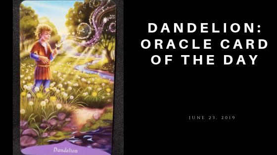 Dandelion Oracle Card