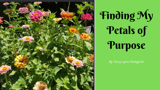 Finding My Petals of Purpose
