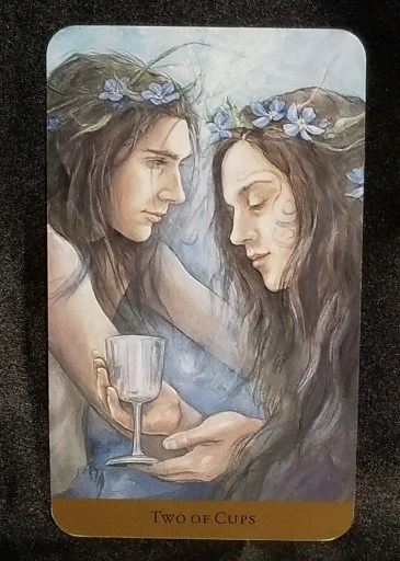 Two of Cups-Tarot Card:  A man gazing romantically outward while a woman gazes into a cup in contemplation.