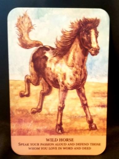 Wild Horse - A stallion racing across the plains