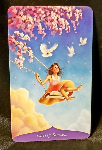 Cherry Blossom:  A young woman om a swing placed beneath a branch laden with cherry blossoms.