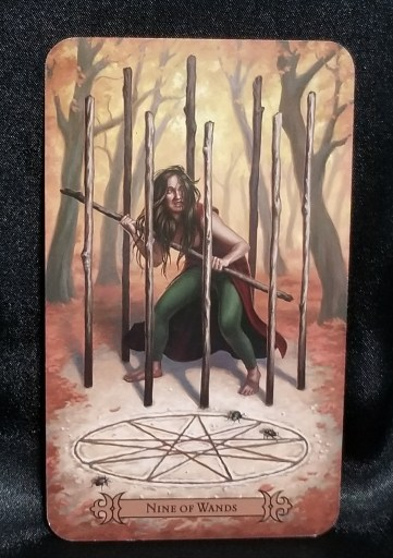 Nine of Wands - Tarot Card: A wild-eyed woman standing in a circle wands, holding one like a weapon.
