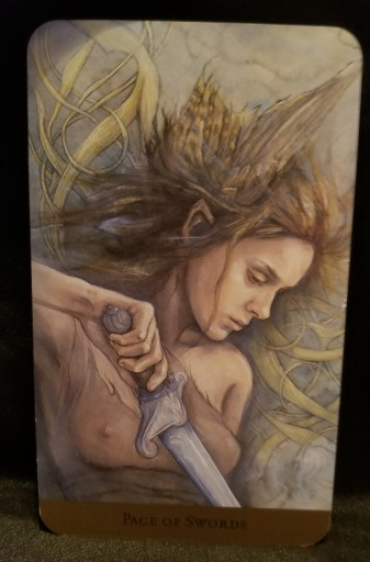 Page of Swords- Tarot Card:  A young elfin woman in a diaphanous top holding a sword