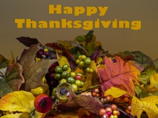 Magickal Thanksgiving - 'the bounty of thansgiving
