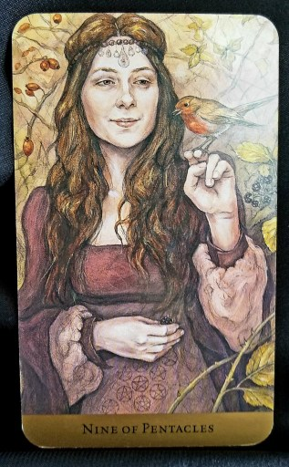 Nine of Pentacles- A pregnant woman looks at a red bird perched on her finger.