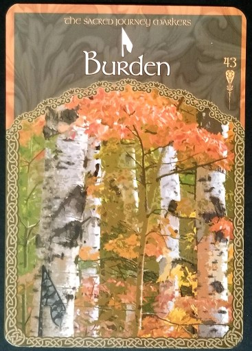 Burden:  A birch forest in the fall.
