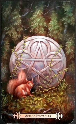 Ace of Pentacles- A red squirrel sits in front of a silver pentacle disc that is partially covered with vines.