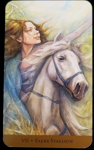 November 2020 - Faery Stallion