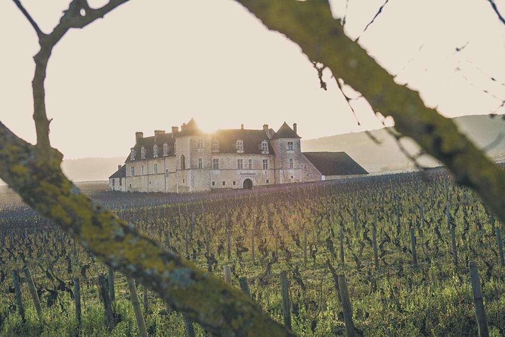 Chateau du Clos Vougeot - Hiver - Photographie par Bénédicte Manière - Photographe Nuits Saint Georges