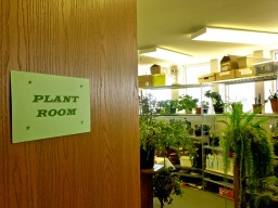Plant Room at Mother of God Monastery