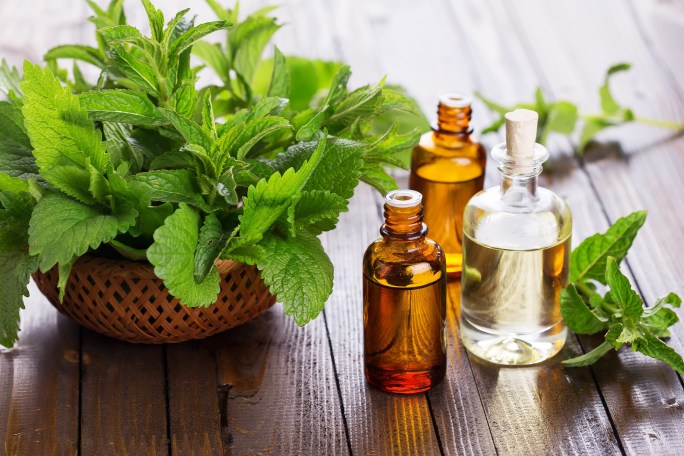 Peppermint-oil-as-essential-oils-for-weight-loss