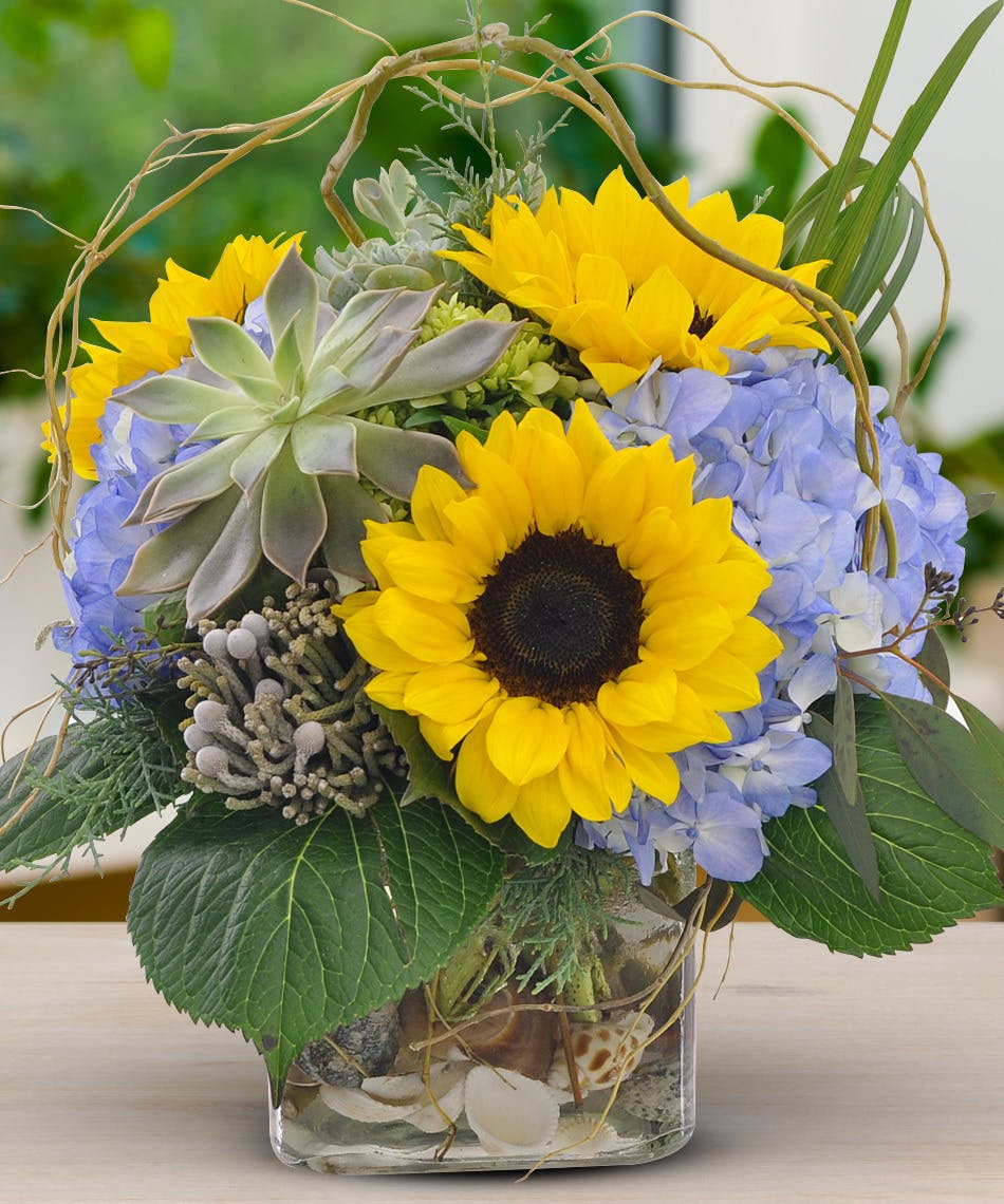 Sunflowers And Succulents Stunning Sunflowers And