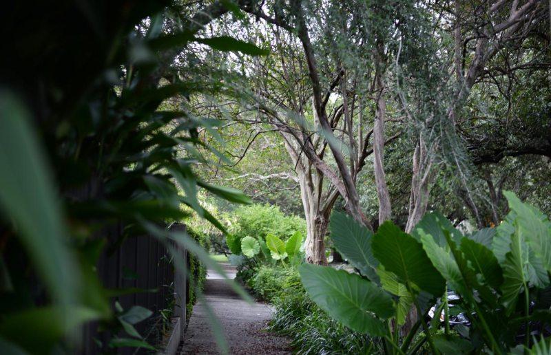 Lower Garden District