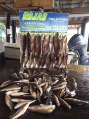 Rojas Fishing Charters