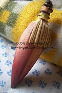 Mocha (Banana flower)
