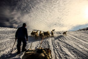 Dog Sled and Northern Light : Kangerlussuaq to Sisimiut