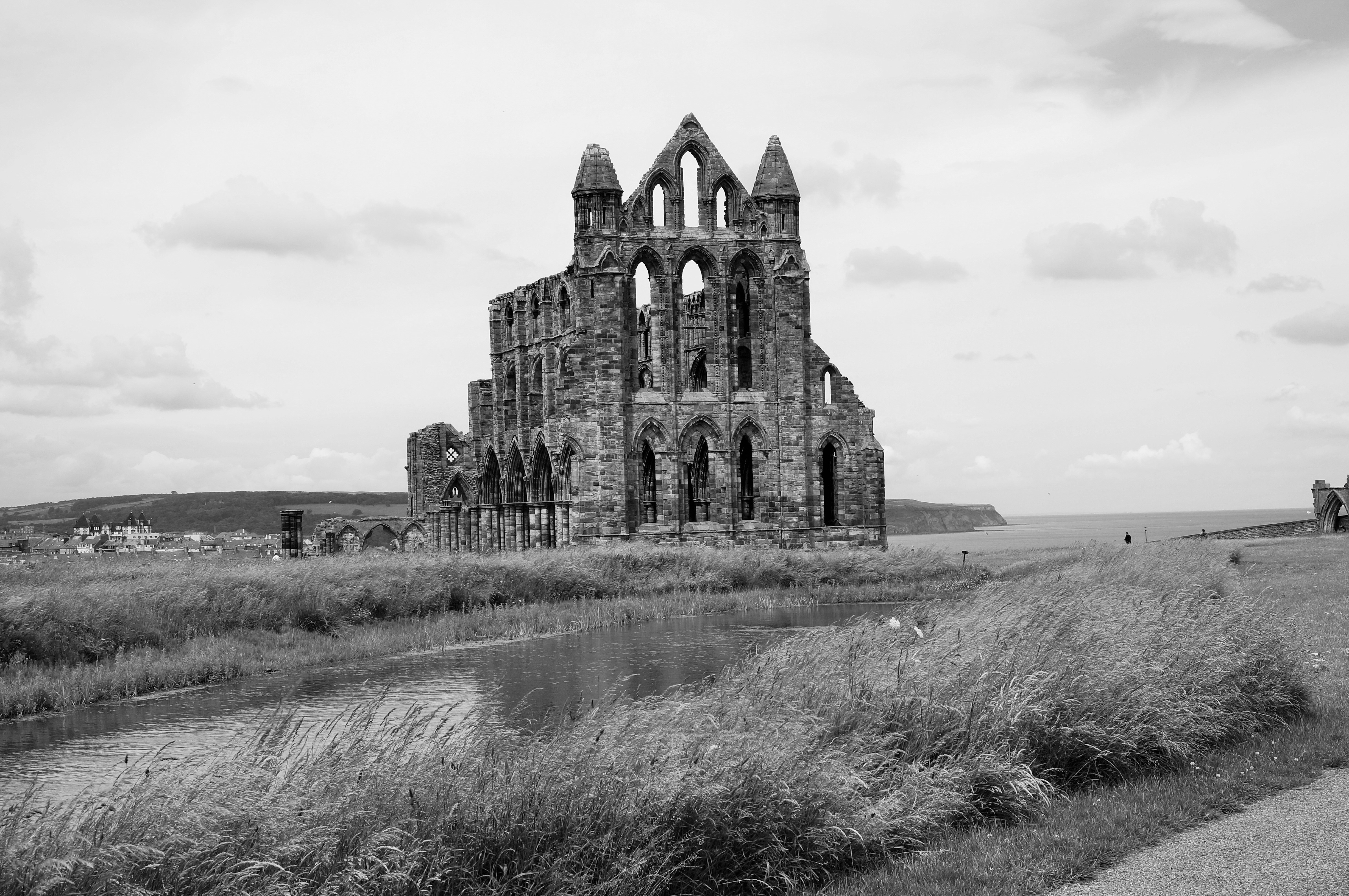 Dalby Forest and Whitby