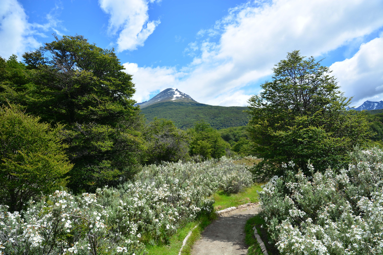 Walking in Patagonia – Tierra del Fuego