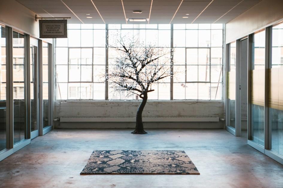 boston design center, Ben Gebo Photography