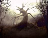 El árbol de Sleepy Hollow