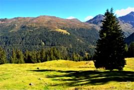 Sellrain Valley