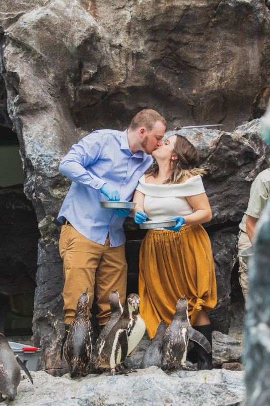 Engagement_Gallery