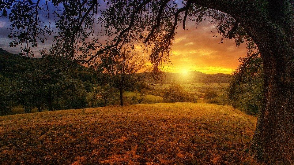Paisaje de una puesta de sol tras unas montañas en el campo, entre árboles.