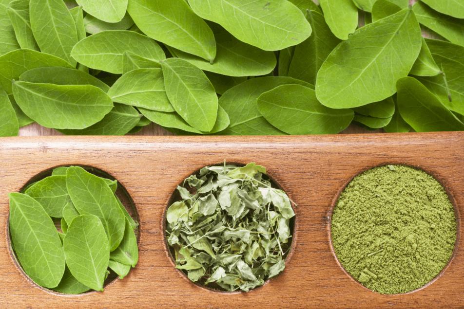 Best-Organic-Moringa-Leaf-Powder-Capsule
