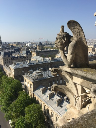 On top of Notre Dame. Look at the gargoyles.