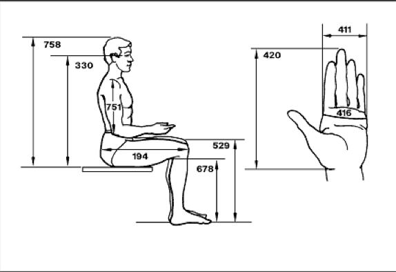 Anthropometry Interior Design