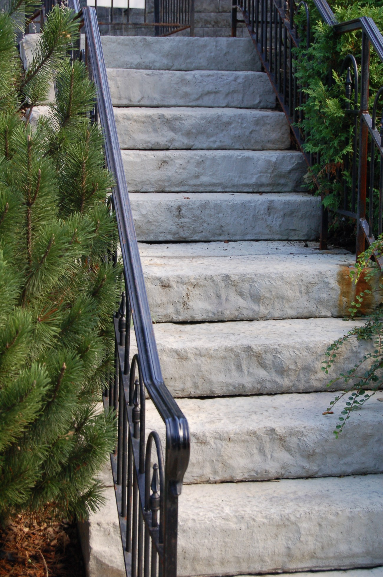 Landscape Stairs