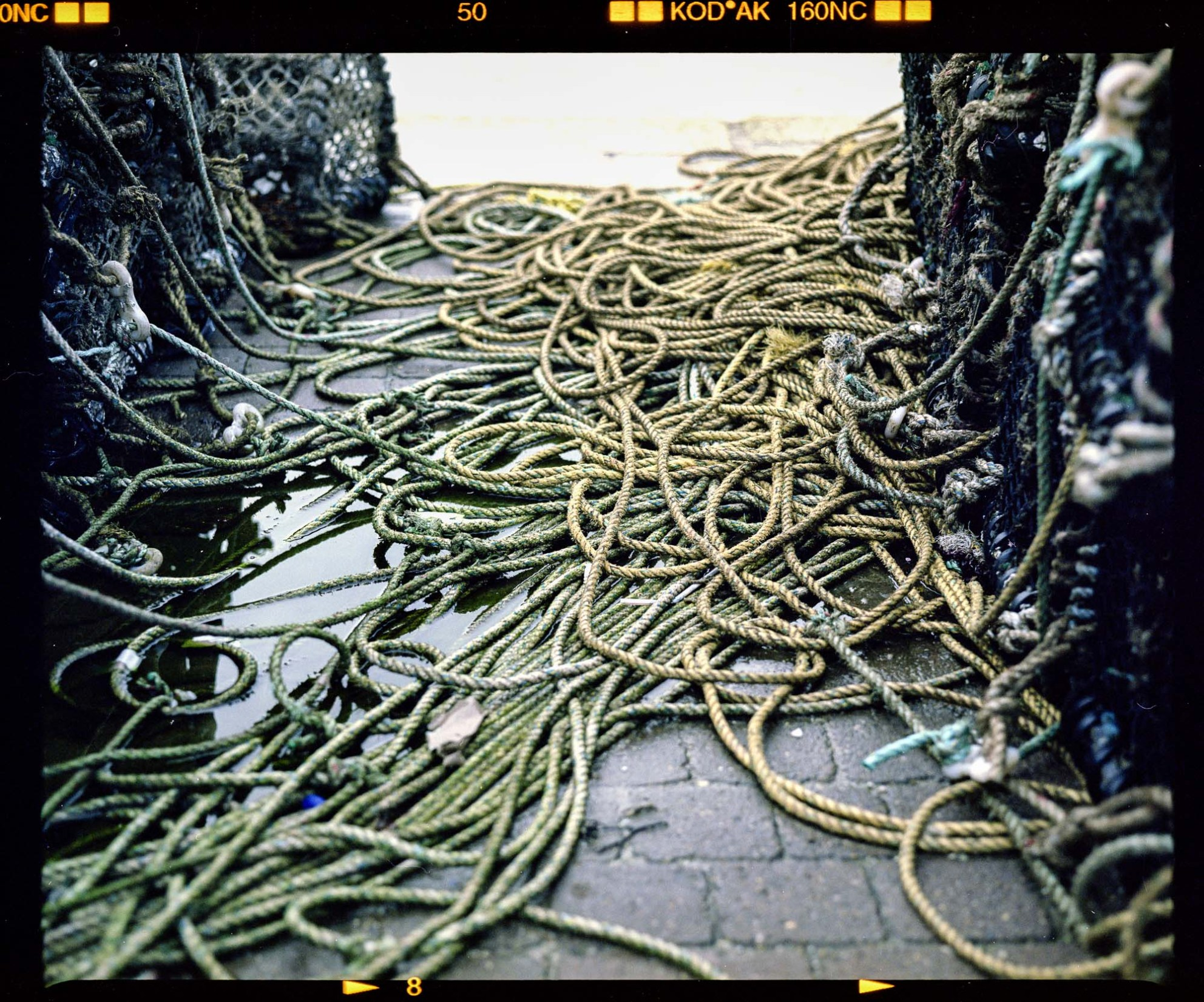 Fishing ropes coiled up shot on a mamiya rb 67 and kodak portra 160nc 120 film