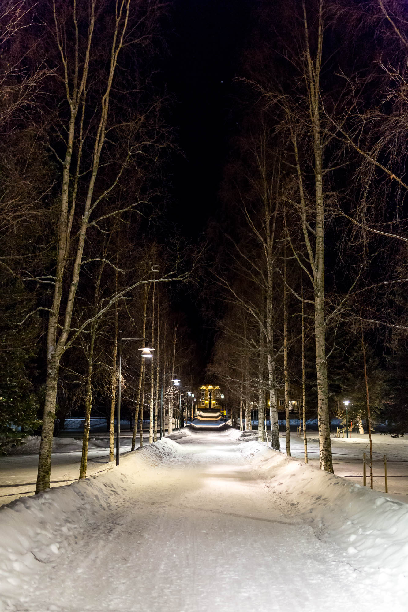 Snow covered path, Luleå, Sweden January 2017, Ben Lee Photography