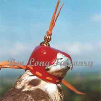 erin falconry hood