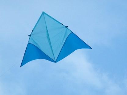 Training Kite
