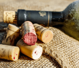 a moldy wine cellar can produce great wines
