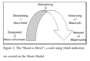 Mauri-o-meter