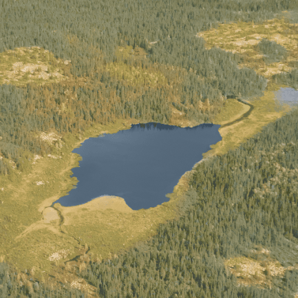 aerialView_512_forestStorm_512