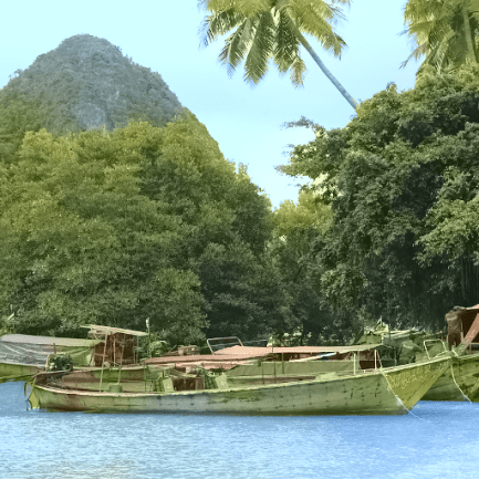 boats_forestHouse_sigDist02