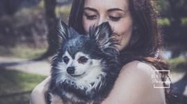 millie-the-dog-photographs-008