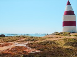 IMG 2554 - Isles of Scilly